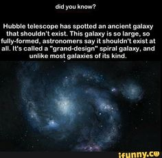 """Hubble telescope has spotted an ancient galaxy that shouldn't exist. This galaxy is so large, so fully-formed, astronomers say it shouldn't exist at all. It's called a """"grand-design"""" spiral galaxy, and unlike most galaxies of its kind. Astronomy Facts, Space And Astronomy, Hubble Space, Space Telescope, Types Of Galaxies, Space Facts, Science Facts, Science Jokes, Forensic Science"""