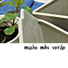 mucho más #verde en tu casa | #elegíVIDA | #elegíVERDE | #elegíNETA