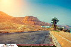 Ein Bokek in Neve Zohar, Israel  |  Ein Bokek is a hotel and resort district on the #Israeli shore of the Dead Sea, near Neve Zohar. It is under the jurisdiction of the Tamar Regional Council.  |  🔸 Source: https://en.wikipedia.org/wiki/Ein_Bokek  |  💻 Book Now: http://www.arabianexperts.co.uk/destinations/israel?utm_source=facebook&utm_campaign=ein%20bokek%20in%20neve%20zohar%2C%20Israel&utm_medium=pinterest&utm_term=israel  |  #flightstoisrael #nevezohar #einbokek  #arabianexperts