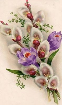 Crocus and Pussy Willow, oh my! This is a beautiful illustration and I never would have thought of putting these two flowers together, but. Vintage Greeting Cards, Vintage Postcards, Flower Prints, Flower Art, Easter Art, Vintage Easter, Flower Images, Vintage Flowers, Collages