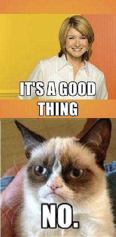 Grumpy Cat - Martha Stewart (Created by Nancy WB) #grumpycat