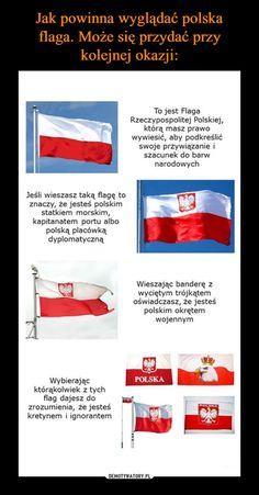 – Jeśli wieszasz taką flagę to znaczy, że jesteś polskim statkiem morskim, kapitanatem portu albo polską placówką dyplomatyczną Wybierając którąkolwiek z tych flag dajesz do zrozumienia, że jesteś kretynem i ignorantem To jest Flaga Rzeczypospolitej Polskiej, którą masz prawo wywiesić, aby podkreślić swoje przywiązanie i szacunek do barw narodowych Wtf Funny, Funny Memes, Jokes, The More You Know, Good To Know, Polish Memes, Its Time To Stop, Good Mood, Blog Tips