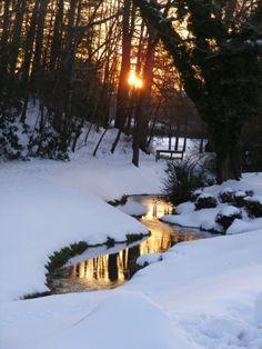 Sunrise on the stream