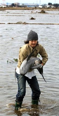 Rescued baby dolphin. It almost looks like a narwhal (man's wallet chain)