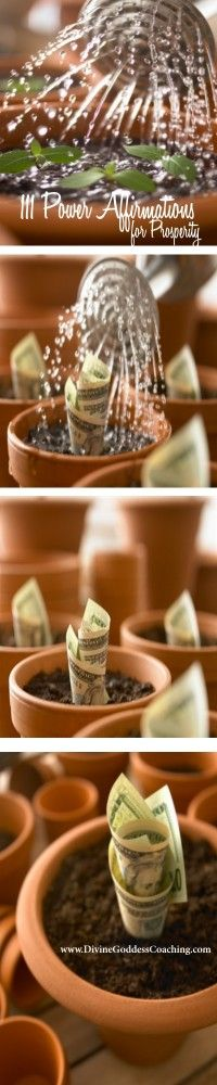 Money does grow abundantly for me as easily and effortlessly as a plant grows in nature