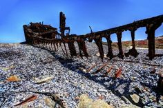 wrecks along coastline provide environments for Cape fur seals and seabird colonies. Nambia