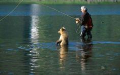 人を怖がらないクマと戯れる写真いろいろ - GIGAZINE