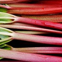 Rhubarb is a long-lived perennial grown for its succulent, super-tart stalks. It is usually one of the first spring foods that can be eaten from the garden. Red Rhubarb, Rhubarb Plants, Rhubarb Pie, Rhubarb Recipes, Garden Soil, Edible Garden, Vegetable Garden, Organic Fertilizer, Organic Gardening
