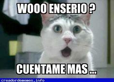 no me digas http://memes.link/1MLRtLe - Nuevo #Meme Publicado en el Creador de #Memes - http://CreadordeMemes.info #Humor