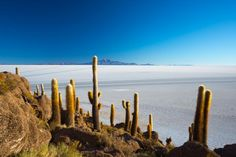 Salzsee, Uyuni, Bolivien