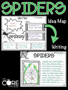 Spiders- Use idea maps to help with informational writing.