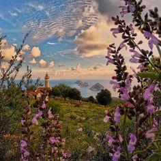 """""""Bahar yalvarırım çek git işine!.. Salma üstüme çiçeklerini ...aklımı çelme!.. Her sabah çimenlerin çiyden ürpererek uyanıyor bahçemde;sonra güneşle oynaşıp tütsülenmiş gibi buğulanıyor. Ne zaman sokağa çıksam badem ağaçları salkım saçak çiçek... Kavaklar kıpır kıpır ıslık ıslığa meltem... Kırda dayanılmaz bir kekik kokusu toprakta türlü çeşit börtü böcek... Yapma bunu bana bahar Böyle üstüme gelme...!"""" #Antalya #Turkey #candundar by onderkoca"""