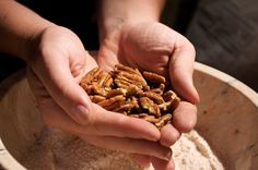 Toasting or roasting brings nut oils to the surface, and pecans are practically overflowing: 75 percent of the nut is pure oil.