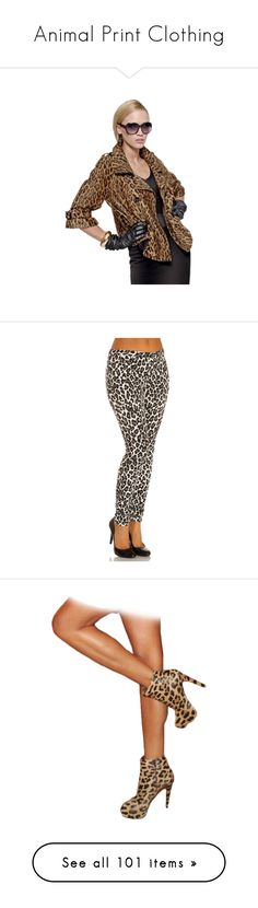 """Animal Print Clothing"" by kitty-t ❤ liked on Polyvore featuring leopard, cheetah, zebra, pants, leggings, hue pants, leopard print jeggings, leopard pants, polka dot pants and polka dot leggings"