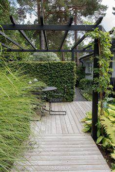Pias och Lindas trädgård — Almbacken Trädgårdsdesign Little Lime Hydrangea, Hydrangea Paniculata, Outdoor Pergola, Garden Inspiration, Minimalism, Planters, Sidewalk, Cottage, Landscape