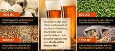A Brief History of Beer - An Ancient Beverage