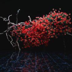 Sogetsu and Akane Teshigahara Ikebana Flower Arrangement, Ikebana Arrangements, Wedding Flower Arrangements, Flower Vases, Flower Art, Floral Arrangements, Wedding Centerpieces, Japanese Floral Design, Japanese Flowers