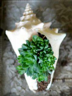 【海外DIY】植木鉢のリメイク・アレンジ【写真解説付き】 - NAVER まとめ