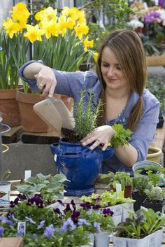 Container gardening tips.
