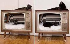 Картинки по запросу домики Кошачий дизайн