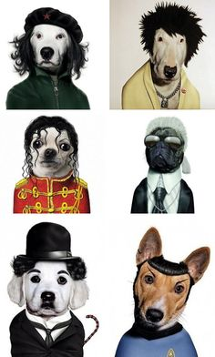 Famous Pets by teNeues Publishing Group