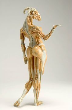 """Maenad muscle,2008年   H.64cm   FRPに着色   ed.7. """"タイトルの Maenad というのは、酒神ディオニュソスの巫女のマイナスの事で、ディオニュソスの信者の男性版は半人半獣のサテュロスです"""" / """"Masao Kinoshita (木下雅雄) creates sculptures of imaginary animals with human-like bodies. Evoking anatomical models, they are finished with watercolours and coloured pencils to convey the physicality of the muscles."""""""