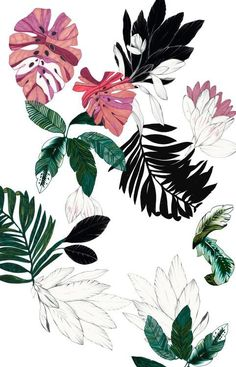 Discovered by ヽ(*≧ω≦)ノ. Find images and videos about art, flowers and wallpaper on We Heart It - the app to get lost in what you love. Illustration Botanique, Illustration Art, Floral Illustrations, Landscape Illustration, Motif Tropical, Tropical Prints, Tropical Pattern, Tropical Vibes, Tropical Leaves