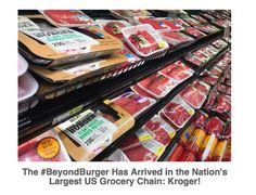 Beyond Meat, an incredible Vegan company is changing the established food market by setting new trends for Vegans.  In the past few months, #beyondmeat has gotten their product placed in the meat case at Kroger chains and franchises and also Safeway. What does this mean for vegans?  First of all, shopping for vegan food has always been a hard chore at regular supermarkets, because you spend the entire time looking at labels.  Secondly, specialty stores are normally far away and take an extra…