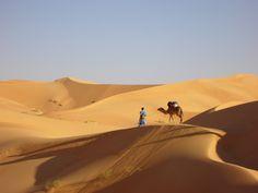 Désert de l'Adrar (Mauritanie)