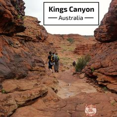 Travel Guide for Kings Canyon in Australia's Red Center - Planning tips, difficulty and photos