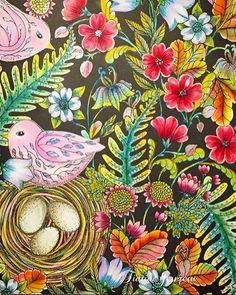 野の花のぬり絵 秋色に お久しぶりです〜✨✨. 忙しくてぬり絵の時間がなかなかとれませんでした コメントも出来ずいいねだけさせて頂いていました❤️ ごめんなさい 今日久しぶりに、野の花を塗ってみました . #塗り絵で被災地を励ましたい . #野の花のぬり絵ブック#wildflowers#マリアトロッレ#大人の塗り絵#大人のぬり絵#大人のぬりえ#大人ノ塗リ絵#おとなのぬりえ#ぬりえ#コロリアージュ#水彩色鉛筆#油性色鉛筆#色鉛筆#ダイソー#daiso#パステル#coloriage#coloringart#coloringbooks#ブラック#ポスカ#白ペン#signo#花#小鳥