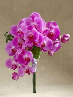 Opulence Bouquet - Interflora