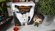 Rien ne préparait Lily, 17 ans, à se retrouver au milieu d'une guerre millénaire entre anges et démons. Alors qu'elle vient de perdre sa mère, Matthew, un ange, lui révèle qu'elle…