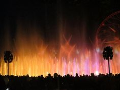 The World Of Color - Winter Dreams show is simply enchanting! A few of the characters from the new movie Frozen can be spotted! #Winter #Disneyland