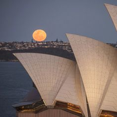 """australia: """"Did anyone else look into the sky last night and see the amazing moon? @jamesmorganphoto captured this fantastic shot as the moon was rising over #Sydney  complete with the @sydneyoperahouse sitting pretty in the foreground. Being so photogenic the #SydneyHarbour looks beautiful from any angle so when youre visiting try viewing Sydneys iconic waterway from multiple locations such as Watsons Bay Mrs Macquaries Chair The Rocks onboard a ferry or from the top of the Harbour Bridge…"""