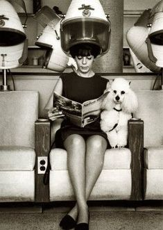 #Poodle Natalie wood at the Beauty shop with her Poodle