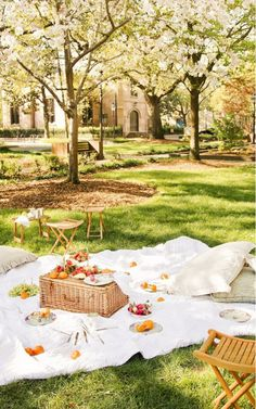 Lovely picnic lunch Enjoying the Outdoors