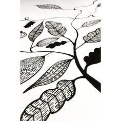#micaelawernberg #art #illustrations #bläck #drawing #ink #blackandwhite #black