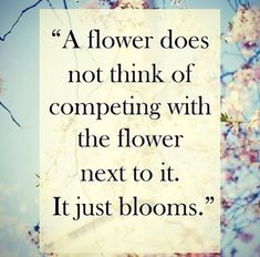 A Flower does not think of competing with the flower next to it. IT JUST BLOOMS! I think I've seen some pretty haughty flowers in my time. I don't think a daisy could be prideful. But I think a rose might be. Great Quotes, Quotes To Live By, Me Quotes, Motivational Quotes, Qoutes, Being Unique Quotes, Inspirational Quotes For Children, Inspiring Quotes, Envy Quotes