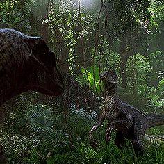 Welcome to Jurassic World Jurassic Park Raptor, Jurassic Park 1993, Jurassic Park Logo, Prehistoric Creatures, Prehistoric Age, Blue Jurassic World, Jurassic Movies, Jurrassic Park, Dinosaur Wallpaper