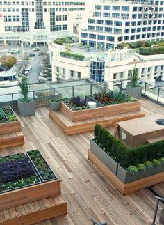 Green Rooftop design