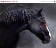 The year of the horse by Amy Kanka Valadarsky on Etsy http://www.etsy.com/treasury/MTY0MDY3MzN8MjcyNTY1MTk0Ng/the-year-of-the-horse?utm_source=Pinterest&utm_medium=PageTools&utm_campaign=Share