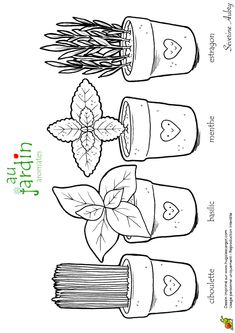 Coloriages jardinage aromates Colouring Pages, Coloring Sheets, Secret Garden Colouring, Plant Science, Create Words, Christmas Coloring Pages, Plantation, Painting Patterns, Coloring For Kids