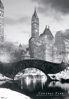 3D Central Park Bridge Framed Photographic Print