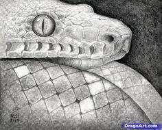 how to draw a snake head, snake head step 16 Deer Drawing, Snake Drawing, Snake Art, Animal Sketches, Animal Drawings, Dog Drawings, Pencil Drawings, Realistic Drawings, Easy Drawings