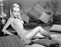 TOP 28 hot sexy pics of naked Barbara Eden ✓ Leaked nude celebrity photos here ✓ Professional and amateur HD pictures in our gallery for FREE! Barbara Eden, Gas Buddy, Erica Campbell, I Dream Of Jeannie, Bullet Bra, Classic Tv, Celebs, Celebrities, Girls Sweaters