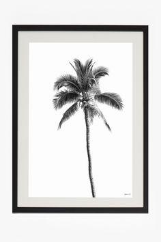<ul> <li> Mounted Palm Springs print with black hardwood frame</li> <li> Plexiglass</li> <li> Mount width: 50mm</li> <li> Depth of frame: 22mm</li> <li> 50cm x 70cm</li> </ul>