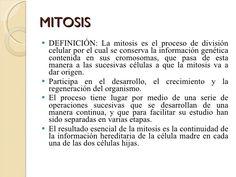 Resultado de imagen de definicion de mitosis