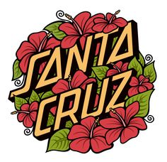 Santa Cruz Skateboards by Katey Horn, via Behance