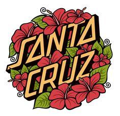 Santa Cruz Skateboards by Katey Horn, via Behance